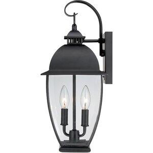 Wilsonville 2-Light Outdoor Wall Lantern