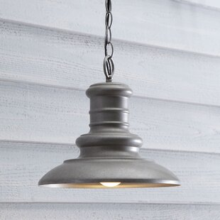 Searching for Colunga 1-Light Outdoor Pendant By Brayden Studio