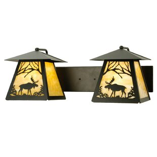Compare prices 2-Light Outdoor Wall Lantern By Meyda Tiffany