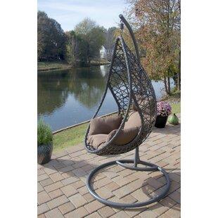Brayden Studio San Marino Hanging Egg Swing Chair with Stand