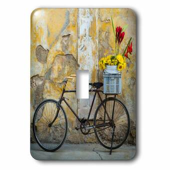 3drose Columbias Highest Quality Only Bike Ad 2 Gang Toggle Light Switch Wall Plate Wayfair