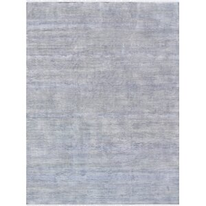 Transitional Hand Knotted Wool Gray Area Rug