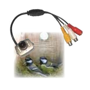 Durfee Camera Kit By Sol 72 Outdoor