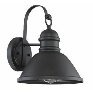 Betsy Outdoor Barn Light