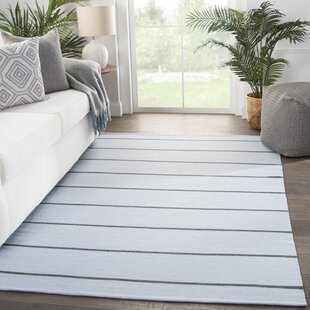 Mcfadden Stripes Handwoven Flatweave Light Blue/Gray Indoor/Outdoor Area Rug