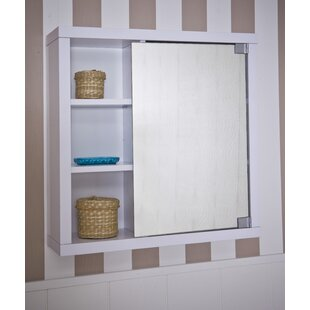 60cm X 61.5cm Surface Mount Flat Mirror Cabinet By Mercury Row
