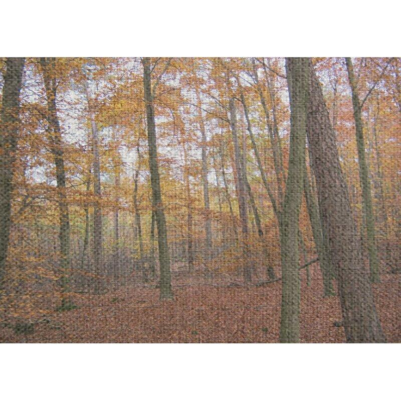 East Urban Home Autumn Brown Area Rug Wayfair