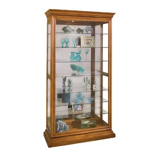 Goldenberg Lighted Curio Cabinet by DarHome Co