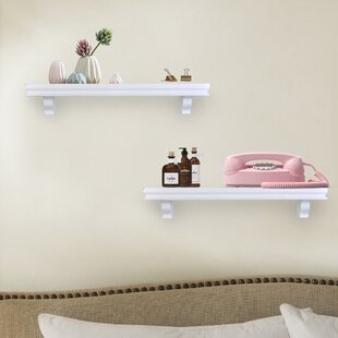 Byerly Decorative 2 Piece Floating Shelf Set