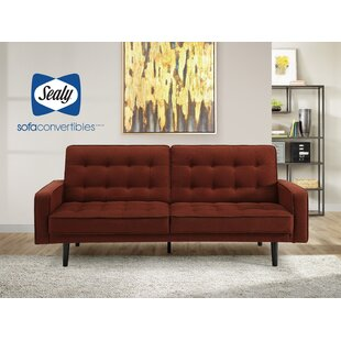 Toluca Sofa by Sealy Sofa Convertibles