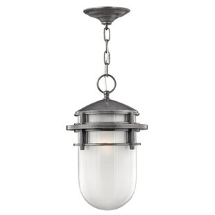 Affordable Warriner 1-Light Outdoor Hanging Lantern By Breakwater Bay