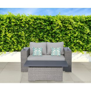 Persinger 2 Piece Sofa Set with Cushions