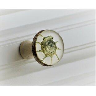 Retro Seashell Mushroom Knob (Set of 4)