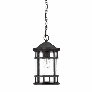 Darby Home Co Ferryhill 1-Light Outdoor Hanging Lantern