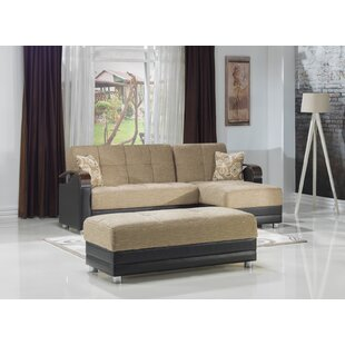 Dianthus 95 Reversible Sleeper Sectional with Ottoman by Brayden Studio