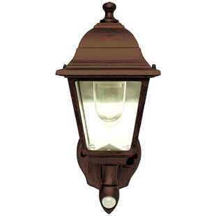 Stony Creek 1-Light Outdoor Wall Sconce