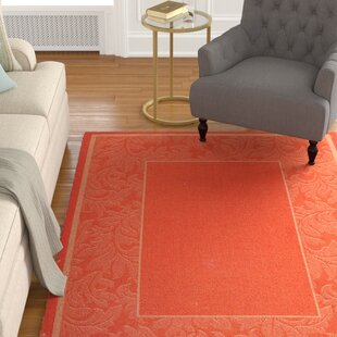 Octavius Terracotta/Natural Indoor/Outdoor Area Rug