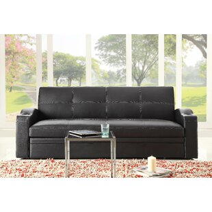 Novak Sleeper Sofa by Woodhaven Hill Reviews