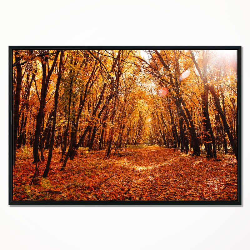 East Urban Home Landscape Yellow Falling Leaves In Forest Framed Photographic Print On Wrapped Canvas Wayfair