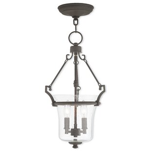 Darby Home Co Richard 2-Light Urn Pendant