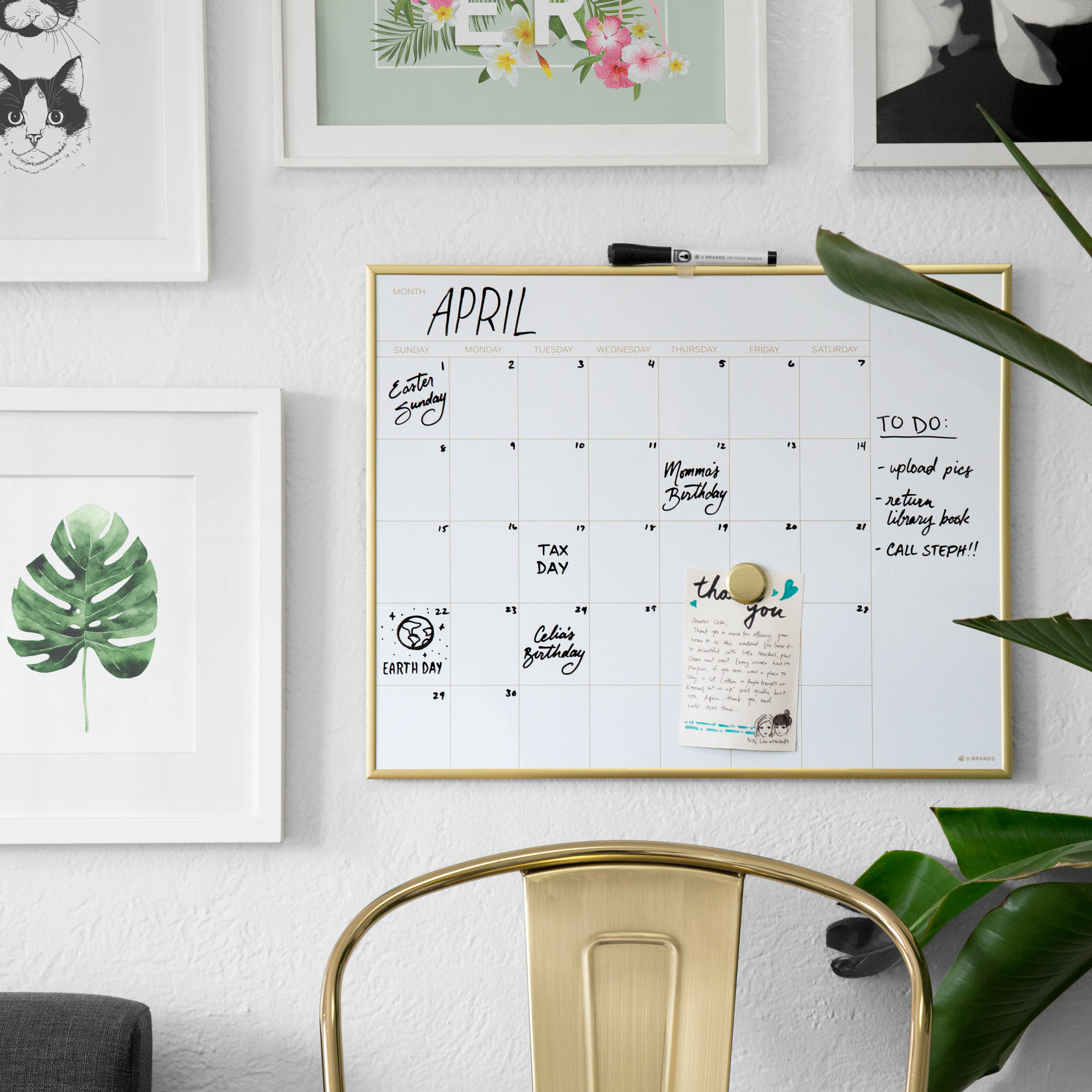 Symple Stuff Magnetic Calendar Planner Whiteboard 20 X 16 Reviews Wayfair