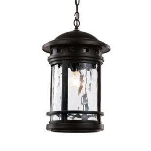 Reviews Ashberry 1-Light Outdoor Hanging Lantern By Loon Peak