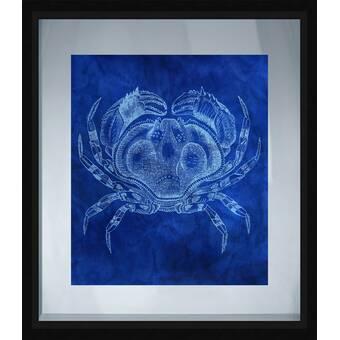 Ptm Images Coastal Crab Framed Graphic Art Wayfair