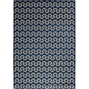 Cassandra Jet Navy Indoor/Outdoor Area Rug