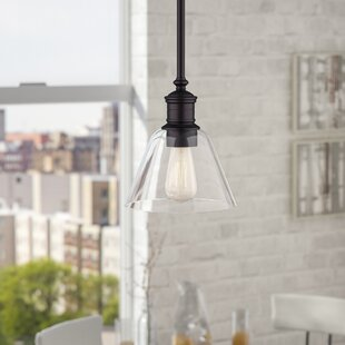 Whitaker 1-Light Cone Pendant