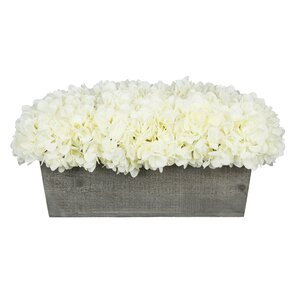 Hydrangeas Centerpiece in Planter