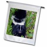 Skunk Garden Wayfair