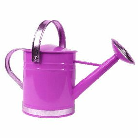 0.5 Gallon Basic Watering Can Arcadia Garden Products