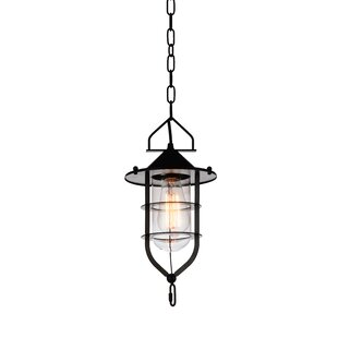 Rhine 1-Light Lantern Pendant by CWI Lighting