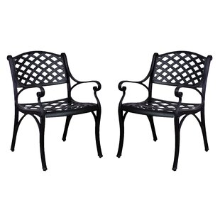 Amelio Patio Dining Chairs (Set of 2)