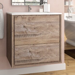 Affordable Trieu 24 Single Bathroom Vanity Set By Orren Ellis