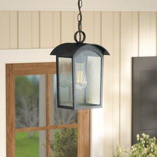 Gracie Oaks Lency 1-Light Outdoor Hanging Lantern