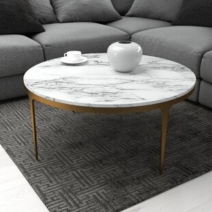 https://secure.img1-fg.wfcdn.com/im/47767558/resize-h310-w310%5Ecompr-r85/7866/78660206/nona-coffee-table.jpg