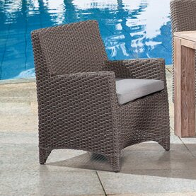 Pleasant Avenue Patio Dining Chair with Cushion (Set of 2)