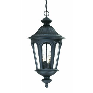 Order Mukai 4-Light Outdoor Hanging Lantern By Beachcrest Home