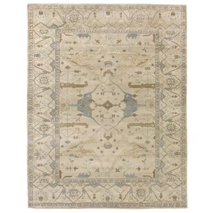 Luxury Traditional Area Rugs Perigold