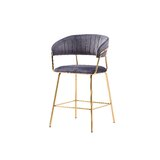 Mata Counter & Bar Stool (Set of 2) by Everly Quinn