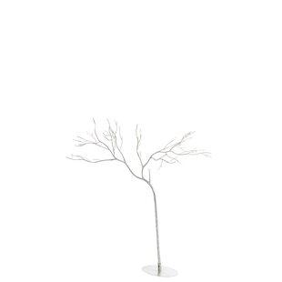 Floor Birch Tree Image