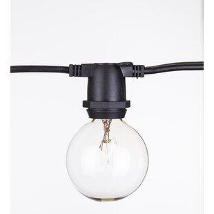 Aspen Brands Global 65 Light Globe String Light