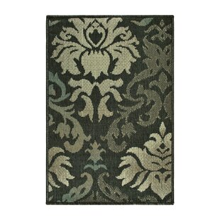 Buchanon Power Loom Polypropylene Brown/Beige Indoor/Outdoor Area Rugs
