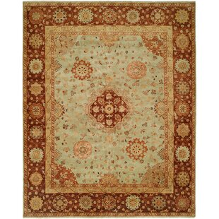 Gudur Hand-Knotted Pale Pistachio/Hopi Clay Area Rug By Meridian Rugmakers