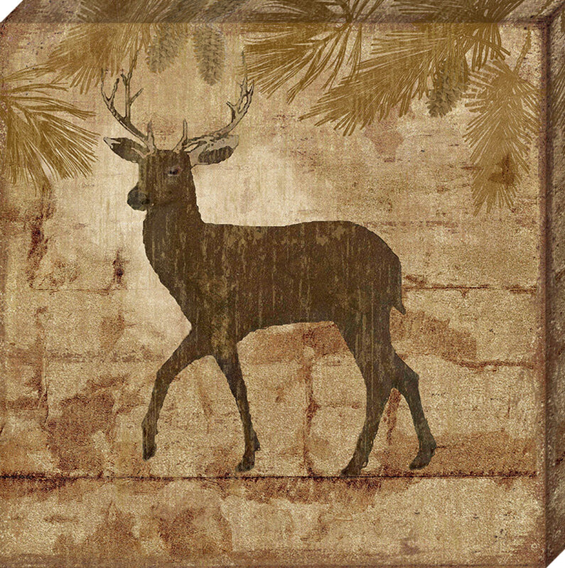 Artistic Reflections Country Deer By Nan Graphic Art On Wrapped Canvas Wayfair