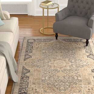 Best Price Riverport Taupe/Black Area Rug ByAlcott Hill