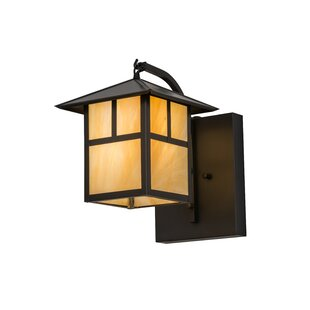 Wydra Outdoor Wall Lantern by Loon Peak