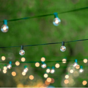 25 ft. 25-Light Globe String Light