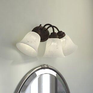 Bumgarner 3-Light Vanity Light by Charlton Home